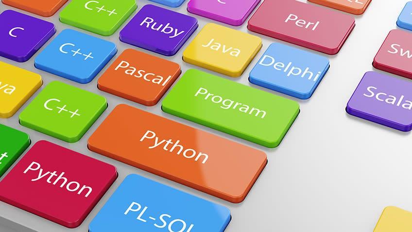Webシステム開発用プログラミング言語 (2)